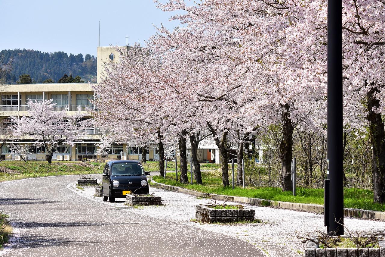 Аренда авто по-японски. Нестандартные решения